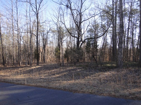 Lot 22 Macgregor, Stoneville, NC - USA (photo 2)
