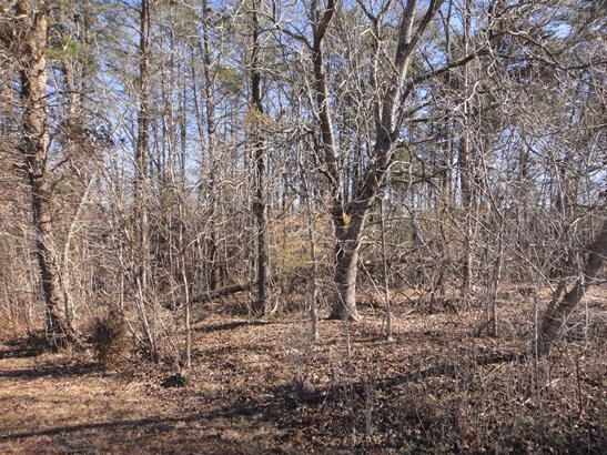 Lot 22 Macgregor, Stoneville, NC - USA (photo 5)