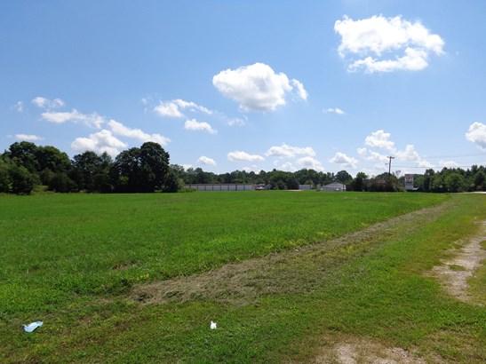 00 Old Us Highway 29, Pelham, NC - USA (photo 5)