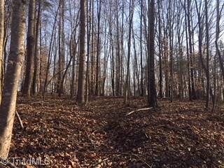 0 Sheets Trail, Germanton, NC - USA (photo 3)