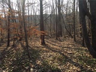 0 Sheets Trail, Germanton, NC - USA (photo 5)