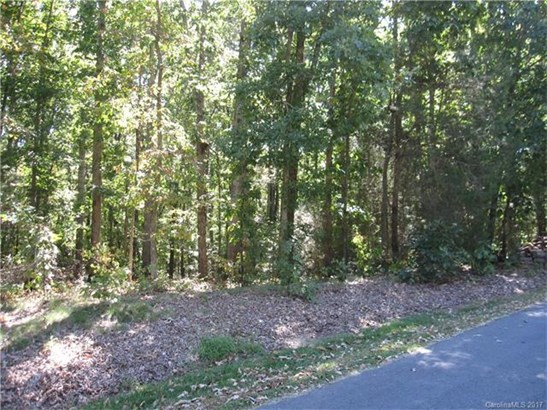 Acreage - Mount Pleasant, NC (photo 1)