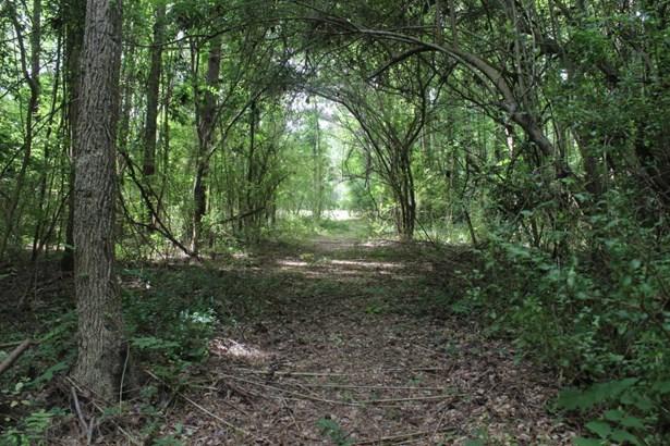 2094 Old Mill Creek Se Road , Winnabow, NC - USA (photo 5)