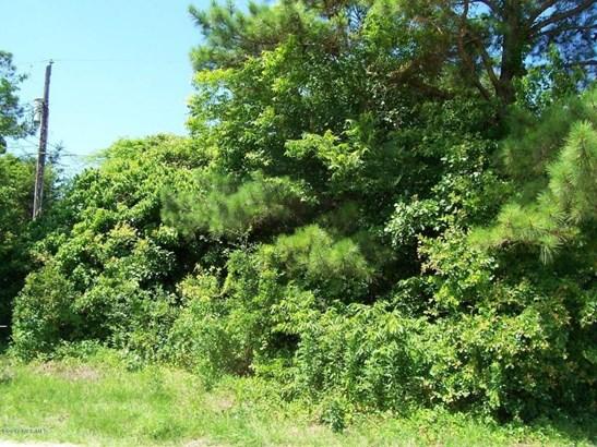 292 Upland Road, Willard, NC - USA (photo 1)