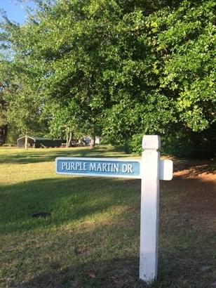 98 Purple Martin Road , Harrells, NC - USA (photo 2)