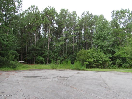 4197 Saddlebrook Drive , Castle Hayne, NC - USA (photo 3)