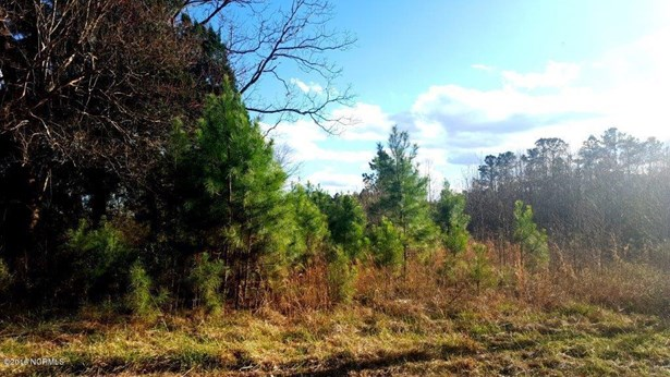 97 Browntown Road, Riegelwood, NC - USA (photo 1)