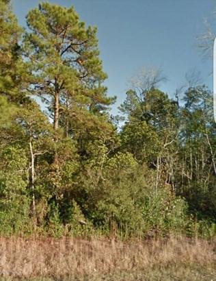 4896 Shaw Highway , Rocky Point, NC - USA (photo 2)