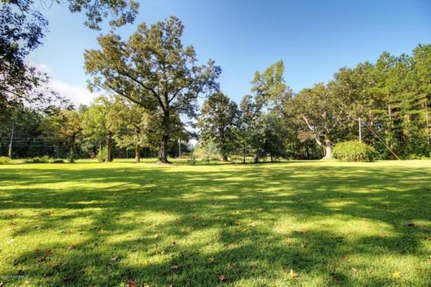 17997 Nc Hwy 87 E, Riegelwood, NC - USA (photo 3)
