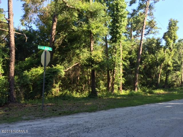 6452 Quail Run Road, Wilmington, NC - USA (photo 4)