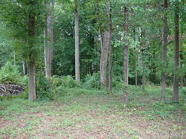 Acreage - Mooresville, NC (photo 1)