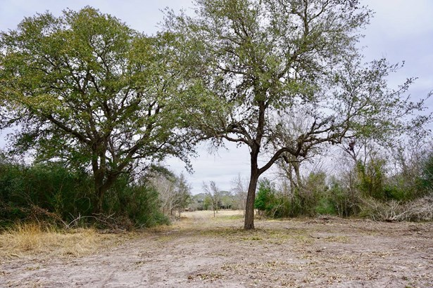 838 East Oak Unit Lot 1, Goliad, TX - USA (photo 1)