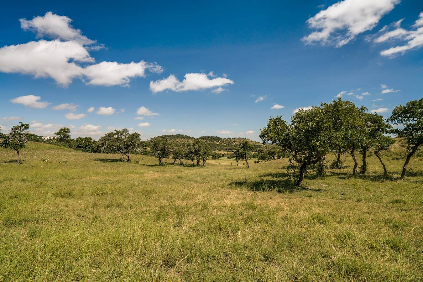 Lot 62,34,20  Vista Real Avenue , Boerne, TX - USA (photo 2)