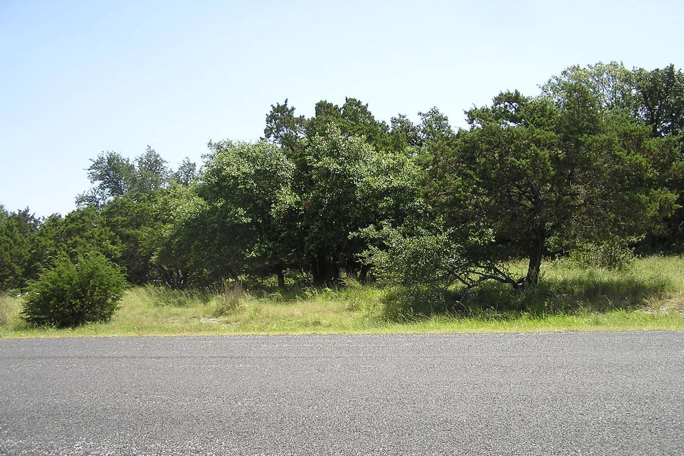503   Breathless View , San Antonio, TX - USA (photo 3)