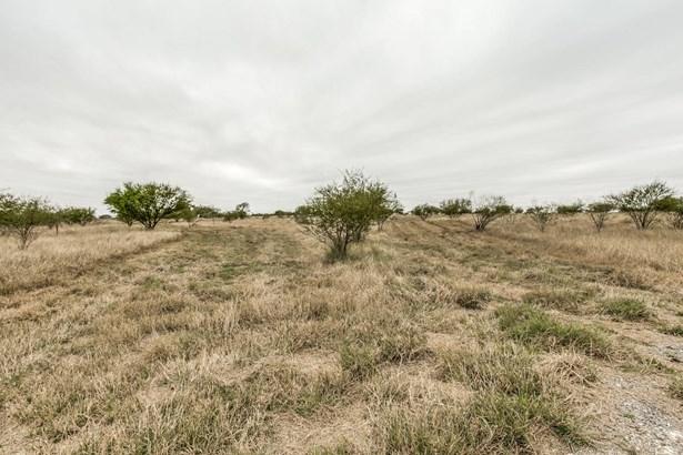 13538  Cr 133 , Pawnee, TX - USA (photo 4)