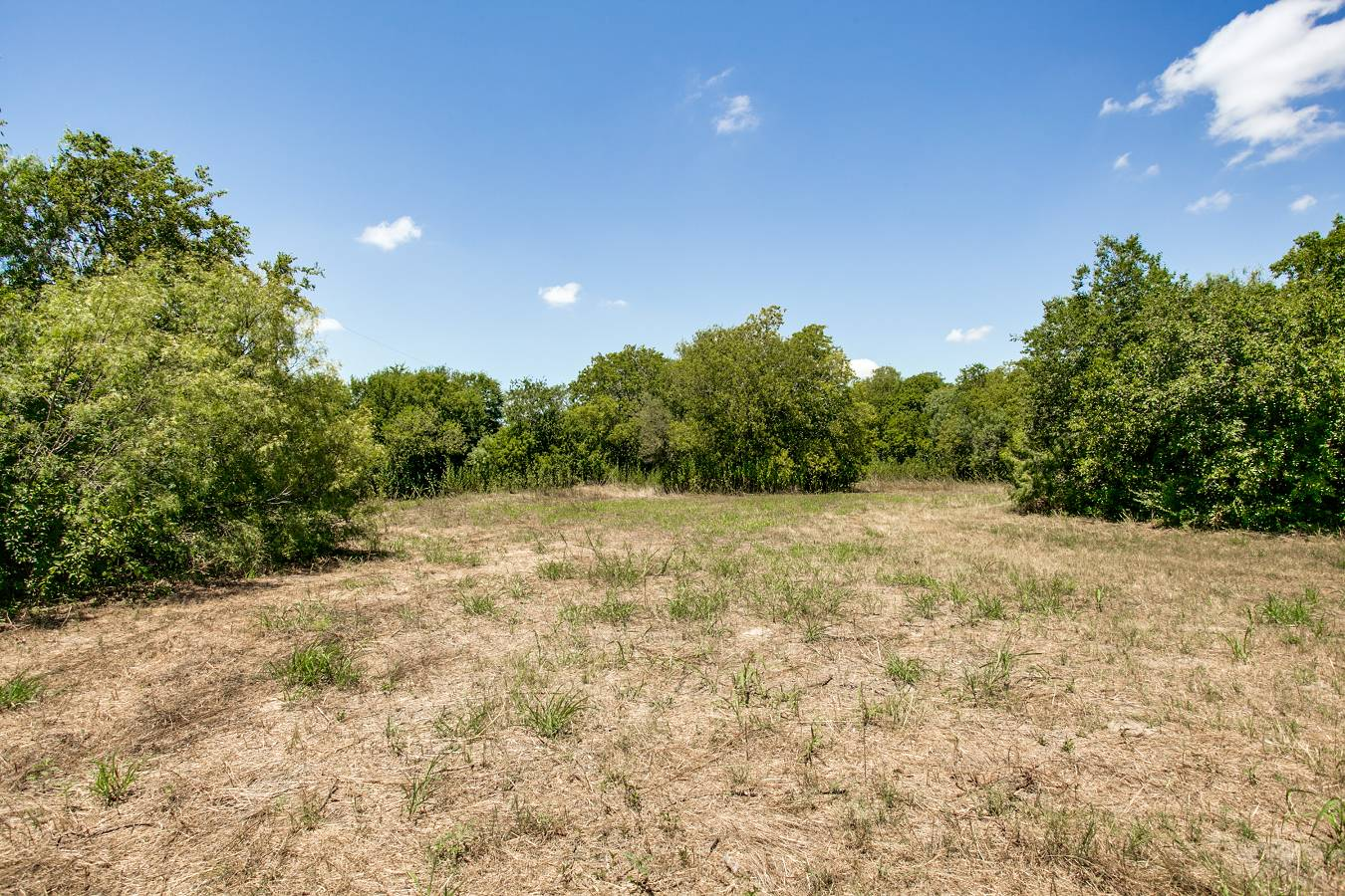 1725  Oakhill Rd , San Antonio, TX - USA (photo 4)