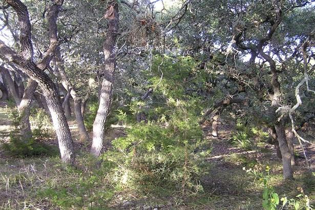0   Breathless View , San Antonio, TX - USA (photo 1)