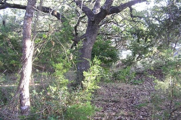 0   Breathless View , San Antonio, TX - USA (photo 5)