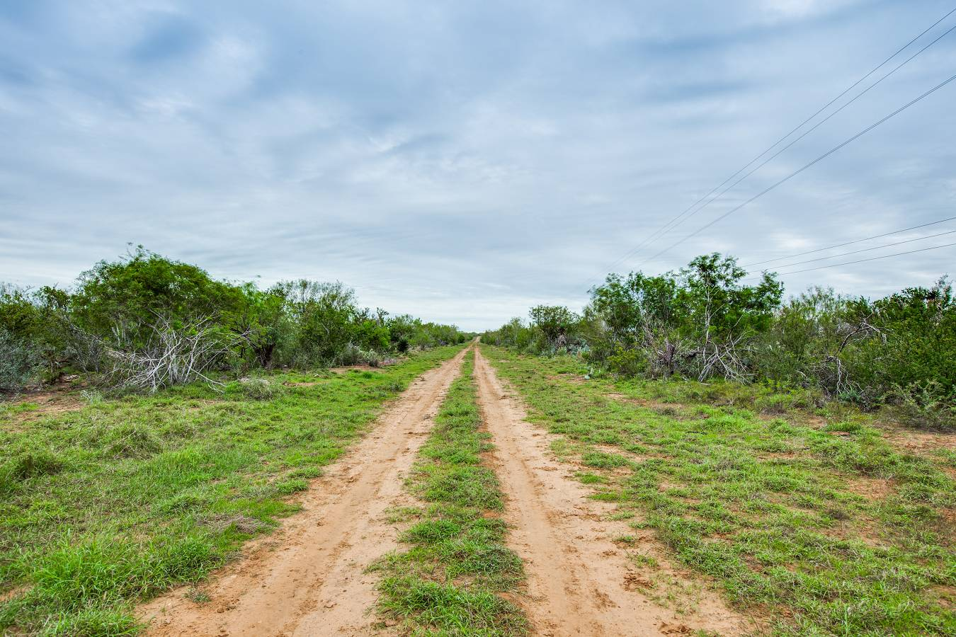 10120  Cr 4670 , Dilley, TX - USA (photo 4)