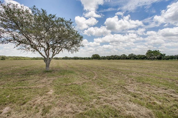 871   Sapenter Rd , Goliad, TX - USA (photo 1)