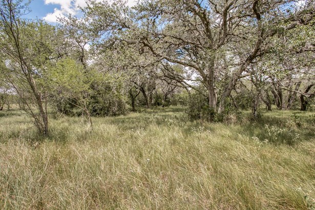 871   Sapenter Rd , Goliad, TX - USA (photo 5)