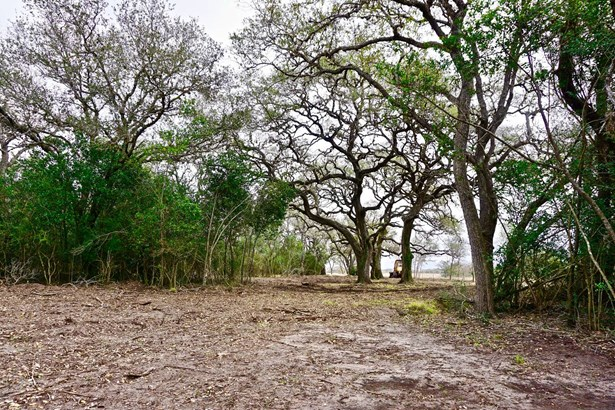 838 East Oak Unit Lot 4, Goliad, TX - USA (photo 4)