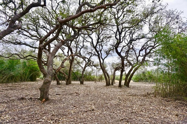 838 East Oak Unit Lot 4, Goliad, TX - USA (photo 5)