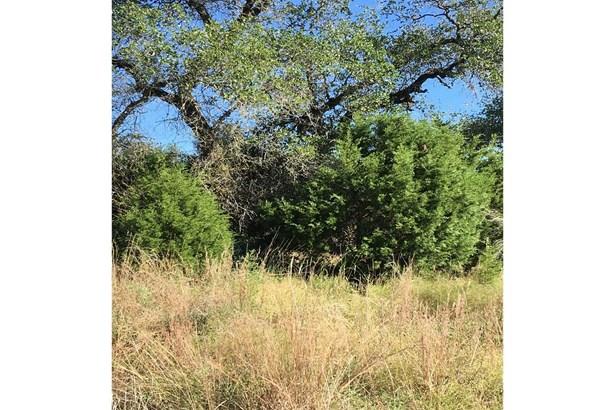 25710  Blanco Rd. , San Antonio, TX - USA (photo 3)