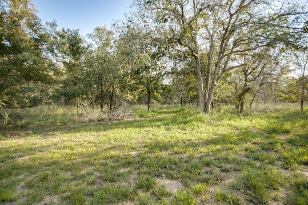 233  Sandy Oaks , Seguin, TX - USA (photo 3)