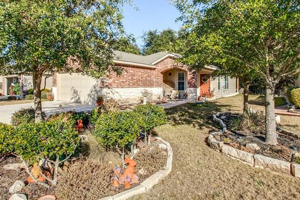 5026  Sandhill Crane , San Antonio, TX - USA (photo 2)