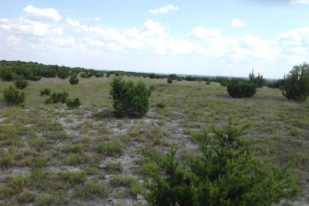 3588  Us Hwy 281n , Lampasas, TX - USA (photo 2)
