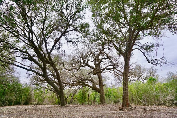 838 East Oak Unit Lot 2, Goliad, TX - USA (photo 1)