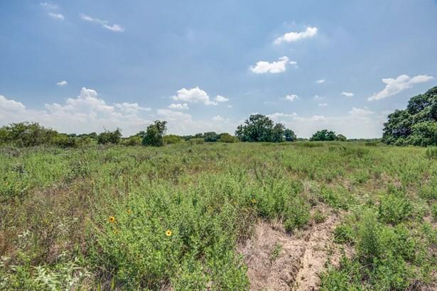 21316  Lamm Rd , Elmendorf, TX - USA (photo 5)