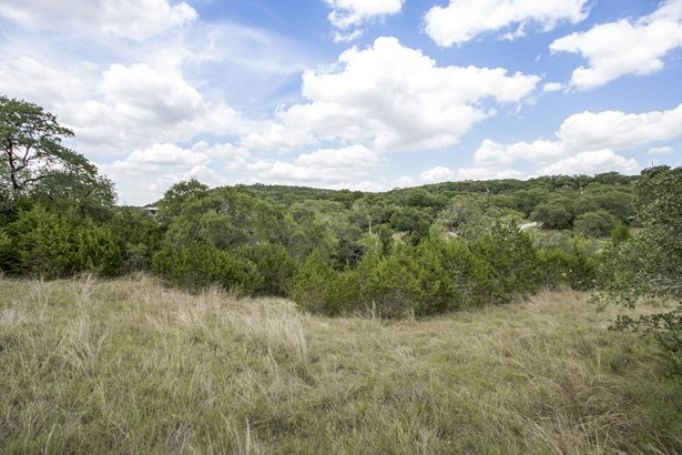 0  Canyon Mist , Grey Forest, TX - USA (photo 4)