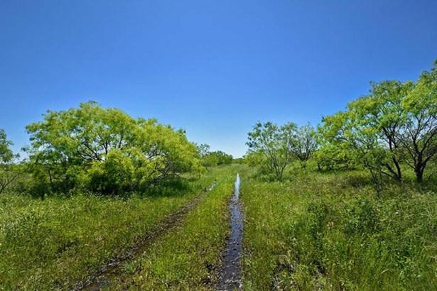 377 Acres  Rocky Rd , Lockhart, TX - USA (photo 1)