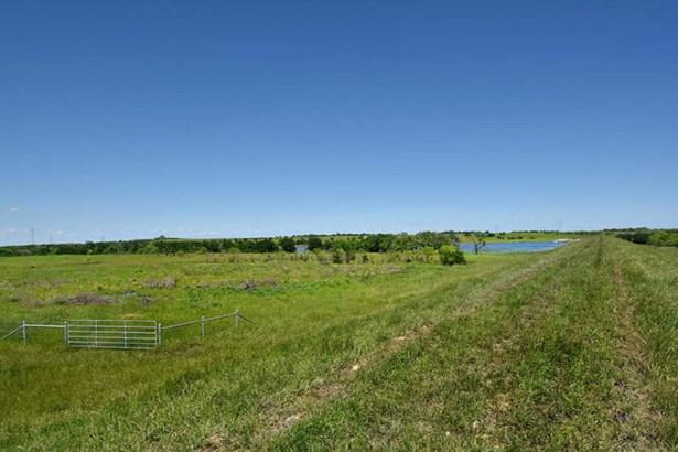 377 Acres  Rocky Rd , Lockhart, TX - USA (photo 3)