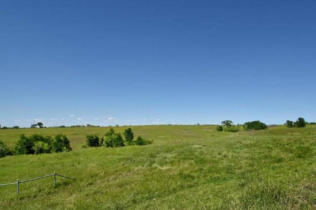 377 Acres  Rocky Rd , Lockhart, TX - USA (photo 4)