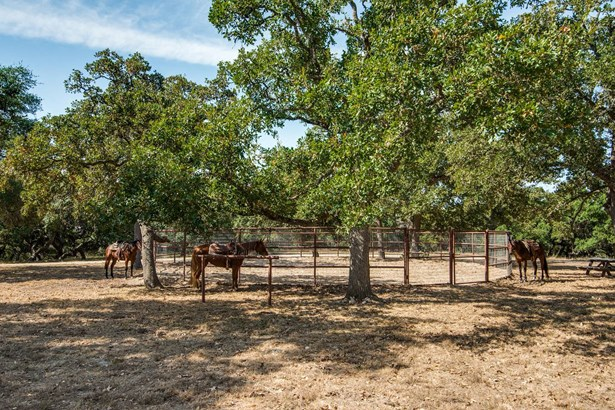 1658  Turkey Knob , Boerne, TX - USA (photo 5)