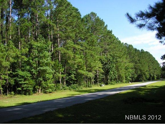 Residential Land - Havelock, NC (photo 2)