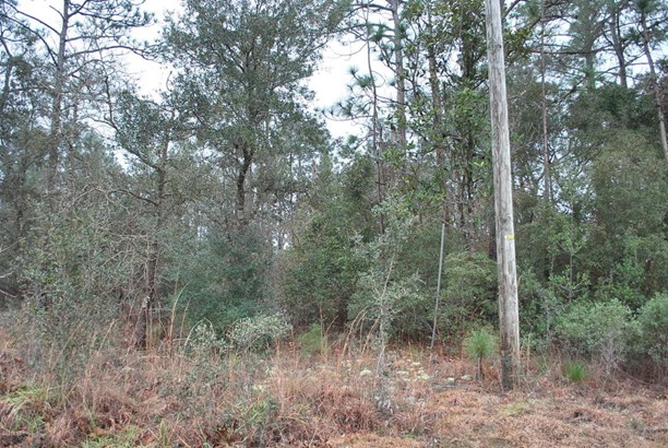 Residential Land - Boiling Spring Lakes, NC (photo 5)