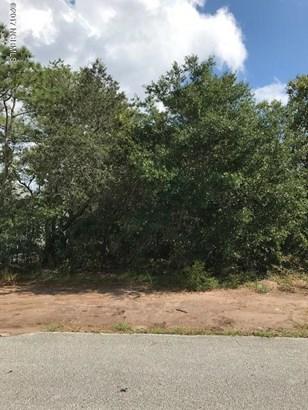 Wooded - Oak Island, NC (photo 1)