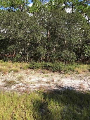 Residential Land - Shallotte, NC (photo 2)