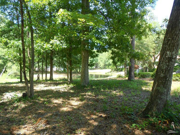 Residential Land - Supply, NC (photo 4)