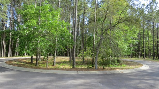 Residential Land - Bolivia, NC (photo 1)