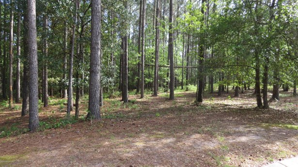 Residential Land - Bolivia, NC (photo 2)
