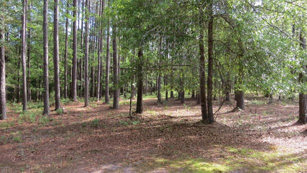 Residential Land - Bolivia, NC (photo 3)