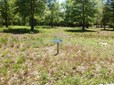 Residential Land - Supply, NC (photo 1)