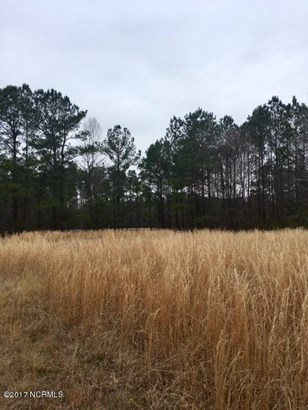 Residential Land - Currie, NC (photo 3)