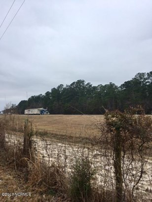 Residential Land - Currie, NC (photo 4)
