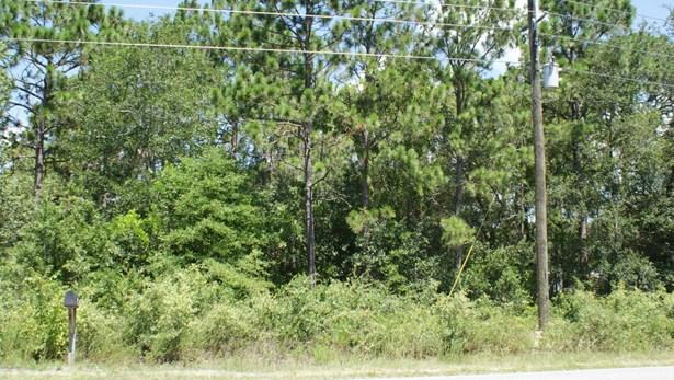 Wooded - Shallotte, NC (photo 3)